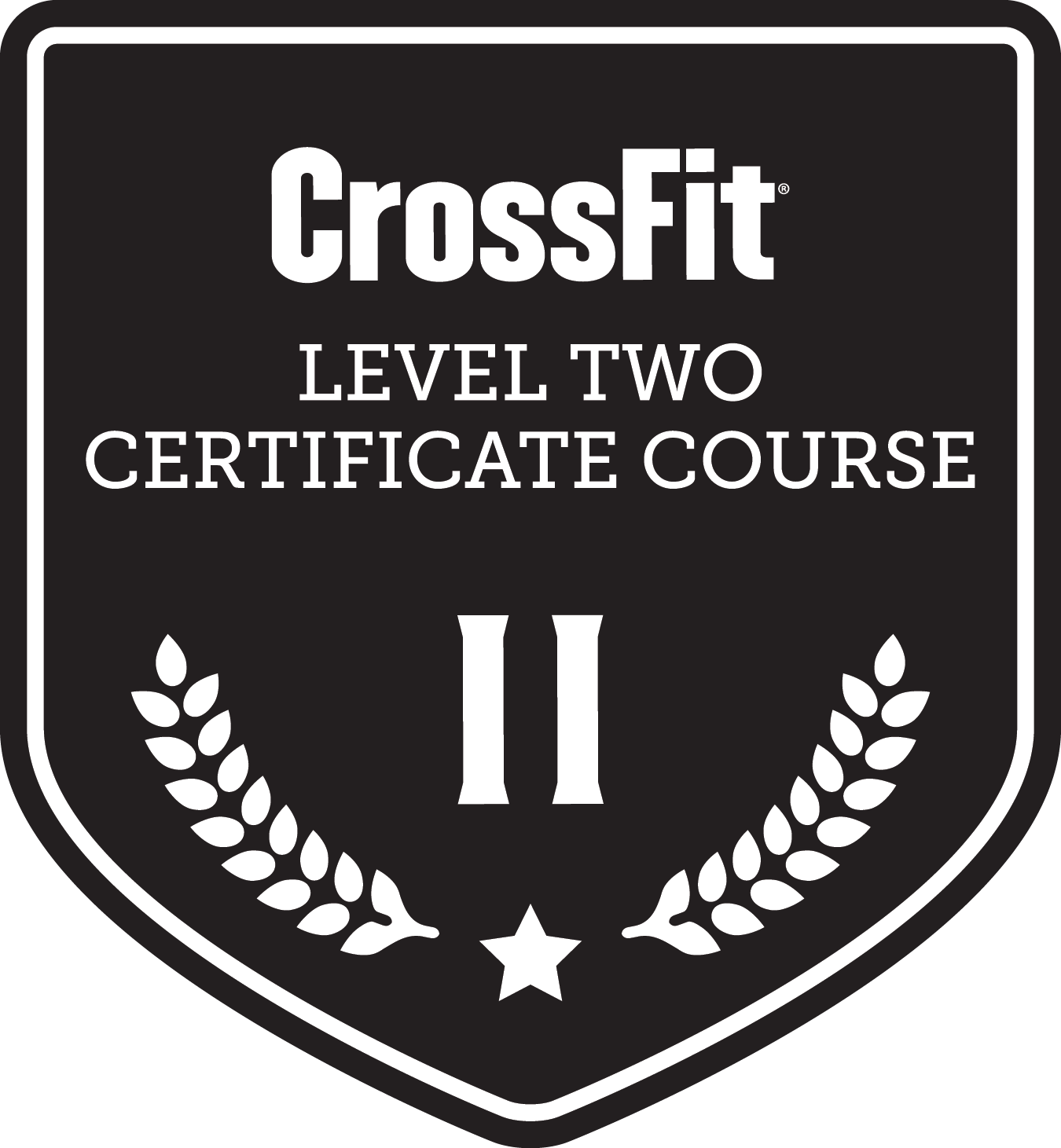 CrossFit Certification Level Two